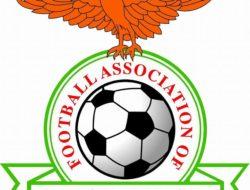 football association of zambia logo