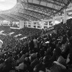 Fans at Zambian football match